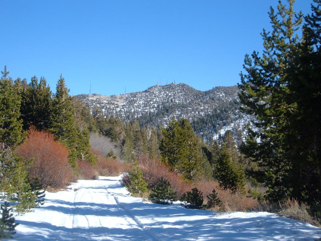 Slide Mountain from the Relay Peak Service Road