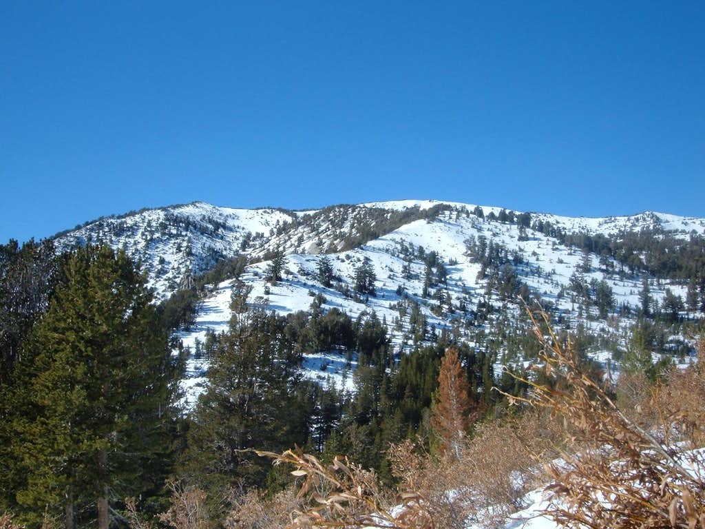 Relay Peak - November 2008