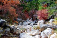 Fall Colors in Pine Spring Canyon