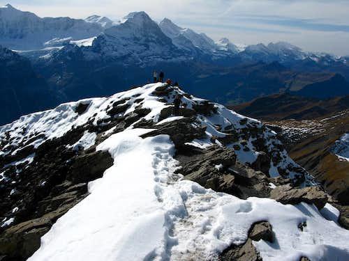 Summit of Schwarzhorn 2928m