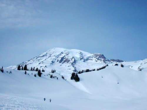 Mt. Rainier