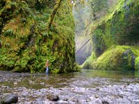 Near Punch Bowl Falls