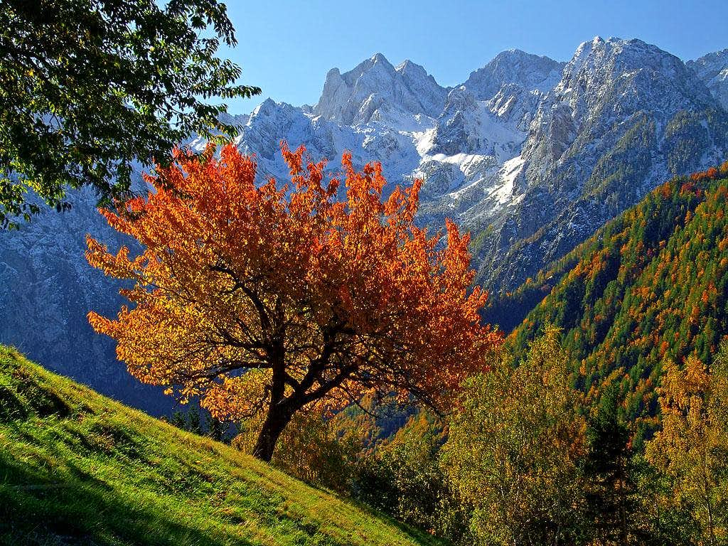 Kamnik/Steiner Alps from Lesnik farm