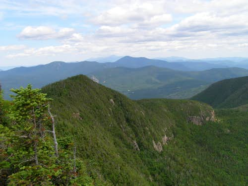 View from summit of Mt. Osceola