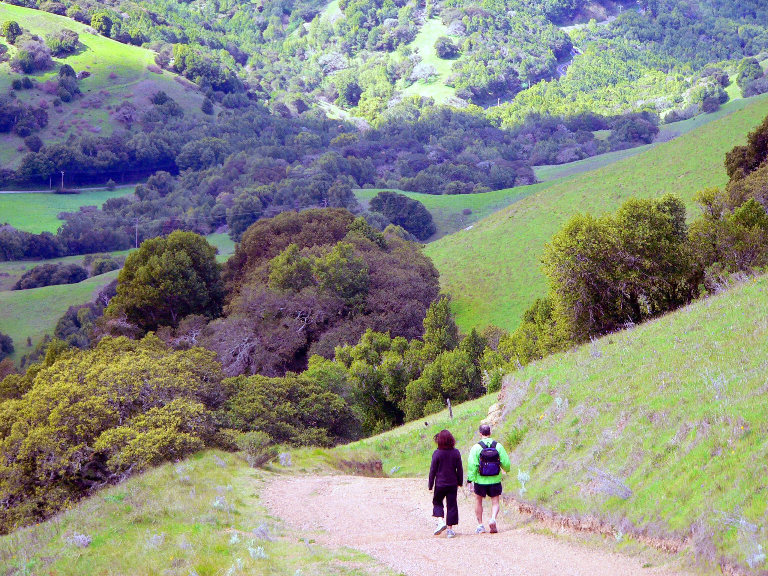 Hills of Marin County, California