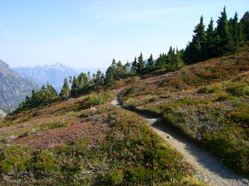 trail on sahale arm