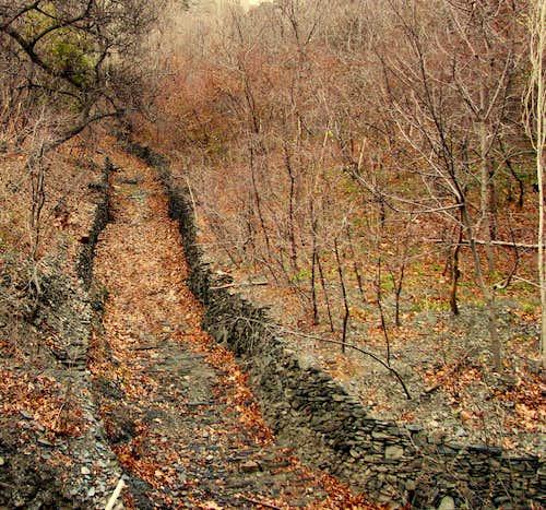 مشهد روستای ازغد