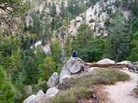 Rock Perched