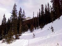 Chief from Squaw Pass Road