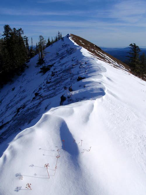 The Ridge Top