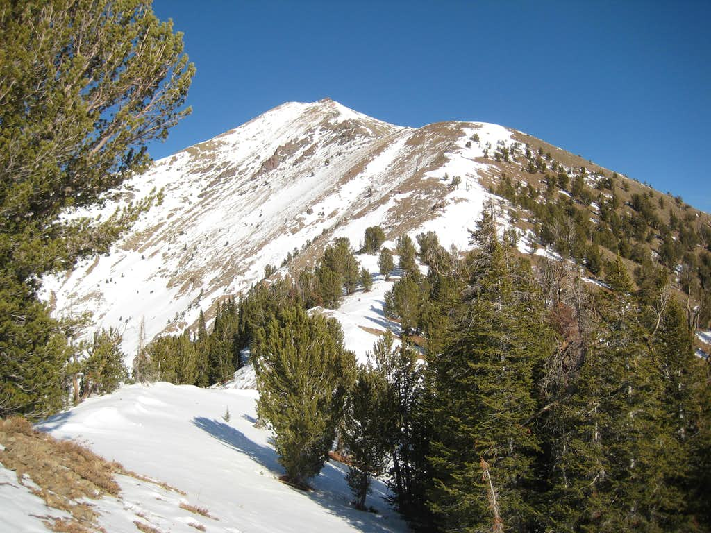 Galena Peak-SW Ridge