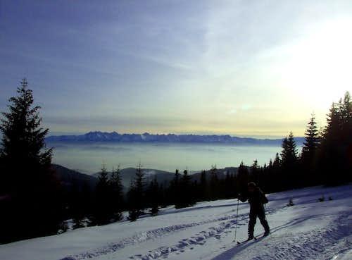 Backcountry ski in Gorce.