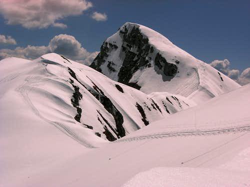 Große Reibn: beautiful Seehorn