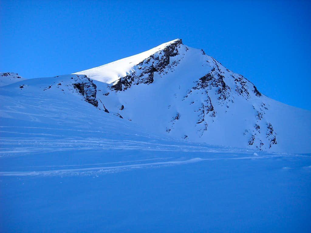Gletscherhorn 3107m