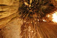 Mitchell Caverns