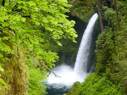 Columbia River Gorge: Metlako...