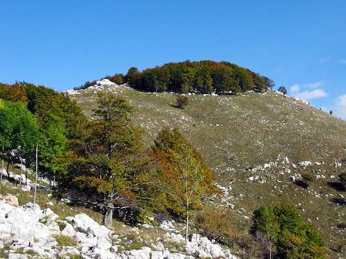 Dnić (1.190 mtrs)