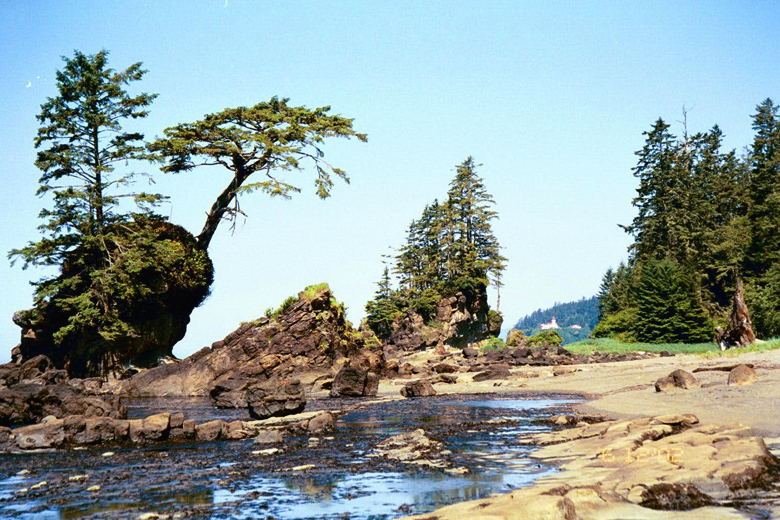 West Coast Trail, Pacific Rim National Park, B.C.
