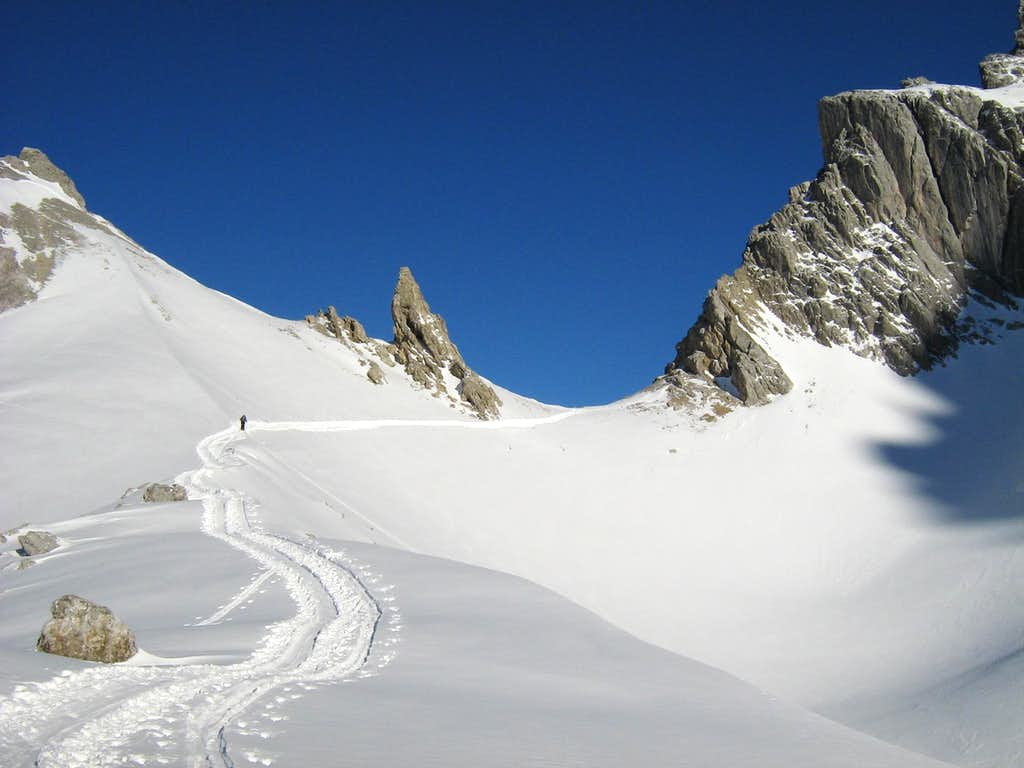 Grünstein loop