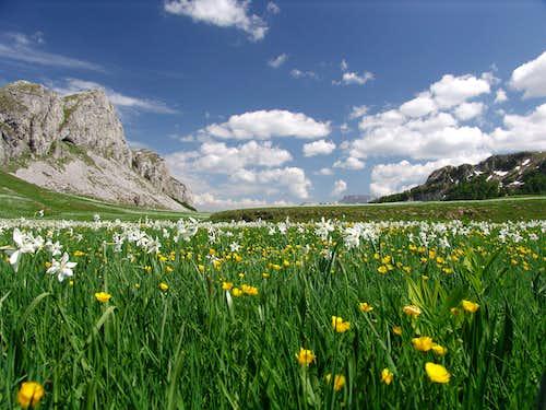 Springtime around Kapetanovo jezero (Captain´s Lake)