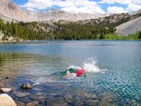 Taking a plunge in Purple Lake