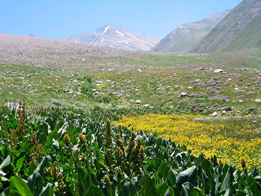 Gardooneh Kooh/Sehezar Valley