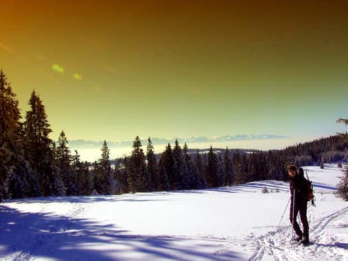 BC Ski in winter time - High Tatra Panorama