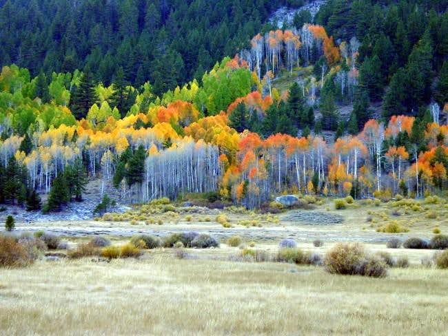 Fall Colors at the Base of...