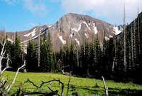 Thorp Creek Meadow