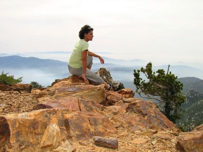 Speedy lunch break on summit...