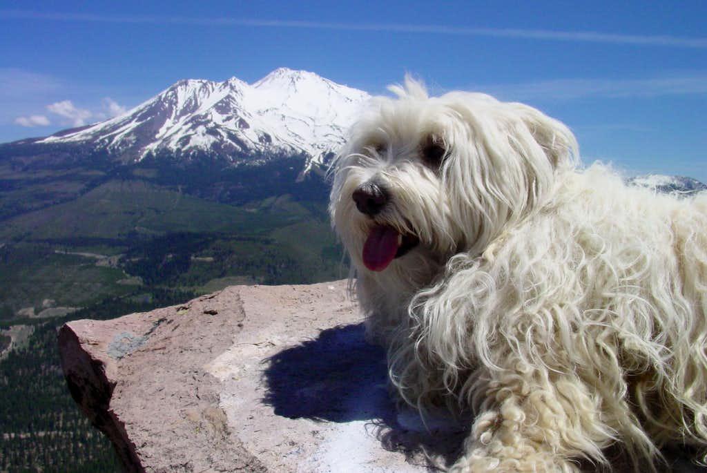 Nella on Top of Black Butte