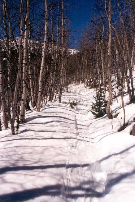 South Mt Elbert Trail