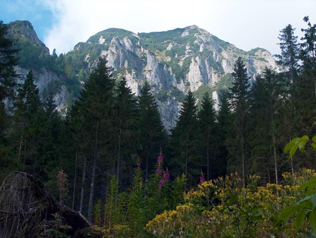 Dolina Monkova in White Tatras