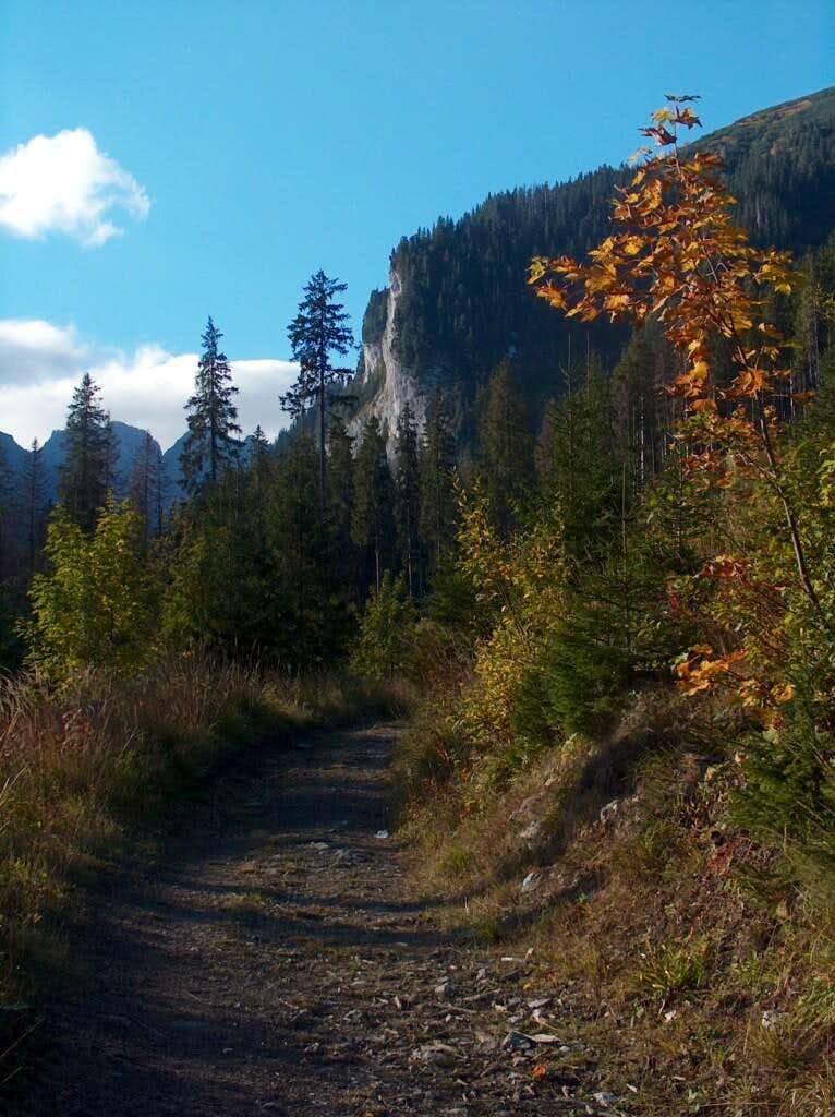 Javorová Dolina in autumn