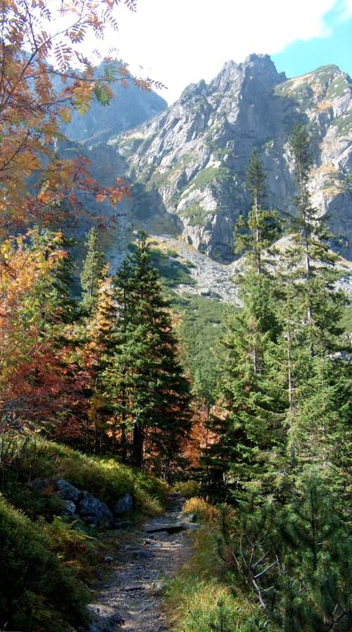 Autumn colours in the valley <a href=