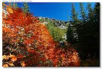 Little Rock Creek Trail