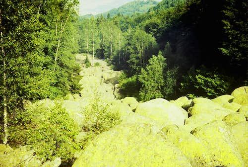 Stone Rivers of Vitosha