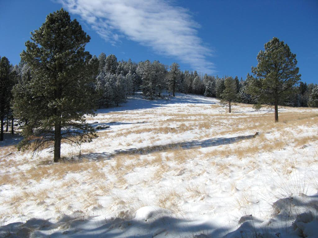 Saddle South of Cerro Grande