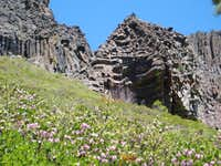 Spring near sonora pass