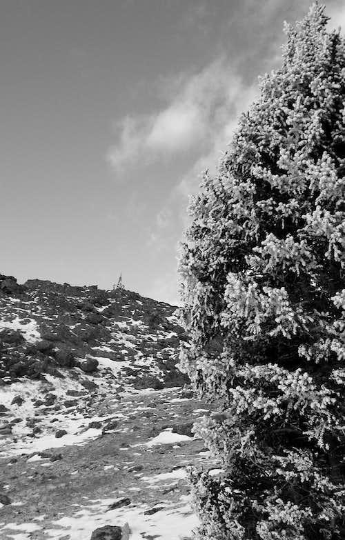 Tarryall 11er Traverse: Gettin Ready for Winter Sloggin