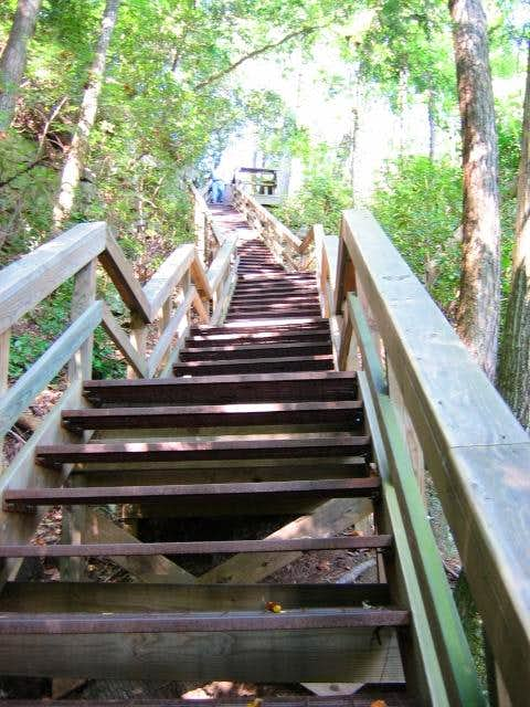 Tallullah Gorge Staircase