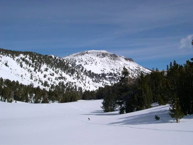 Mt. Rose as seen in winter...