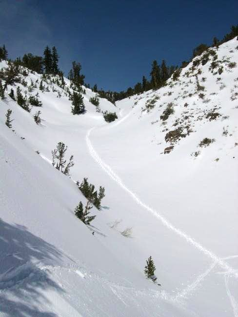 The gulley on the Mount Rose...