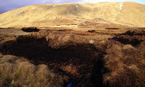 Rotten Bottom Peat Bogs