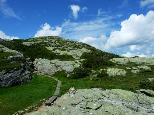 The Alpine Landscape Of Mount Mansfield