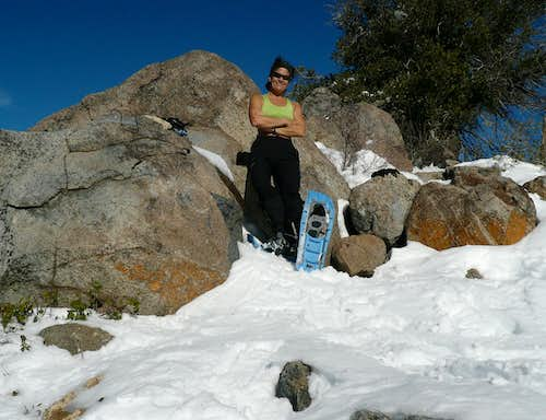 Balmy Ascent of Cuyamaca