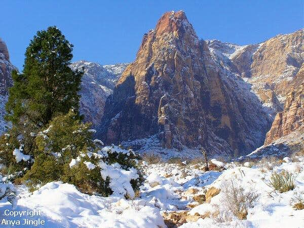 Mescalito and snow