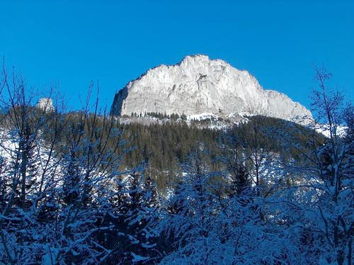 The valley Javorová Dolina in winter