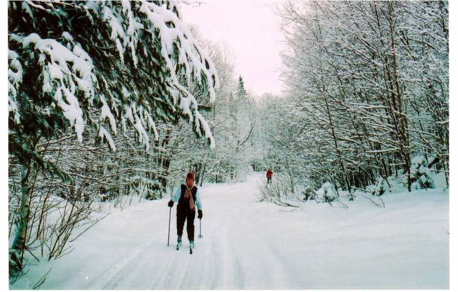 Skiing to Michigan Highpoint