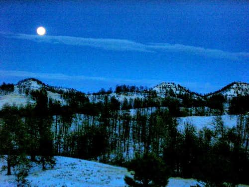 Moonrise over the Pine Ridge